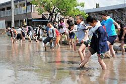 田植えを前に「どろんこ体験」をする飯田市鼎小の児童